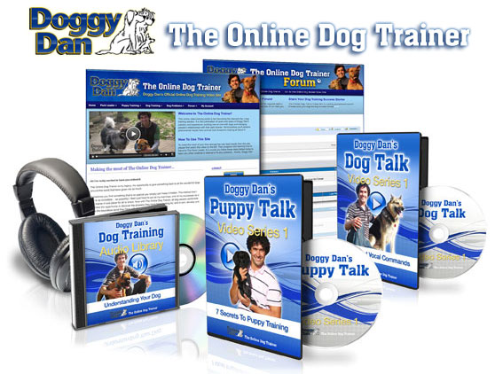 doggy-dan-the-online-dog-trainer